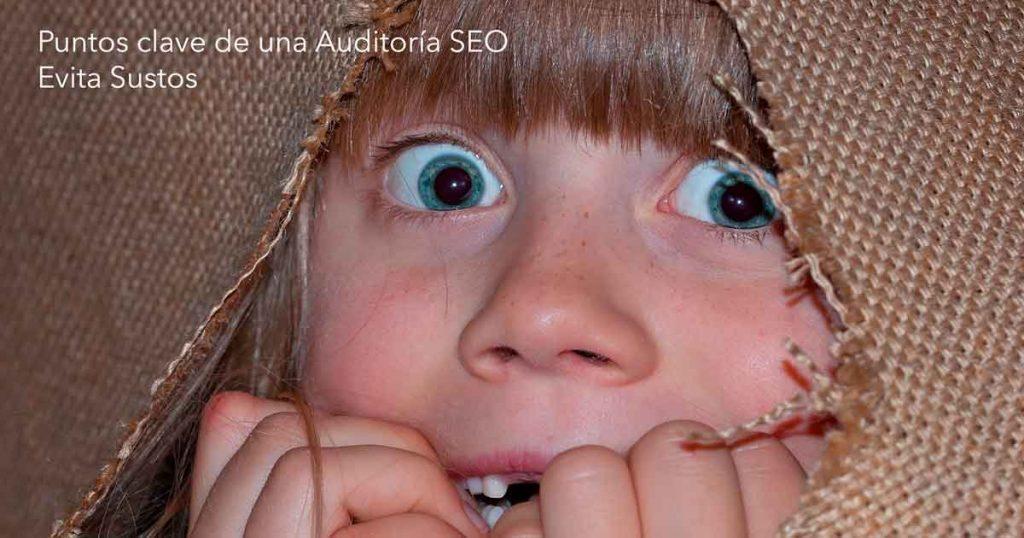 Puntos clave de una Auditoría SEO